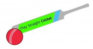 Play Straight Cricket